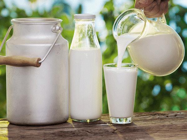 uống sữa ensure có béo không